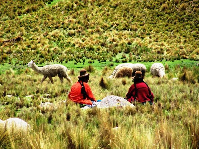 Peru Auf_den_Spuren_der_Inkas_22