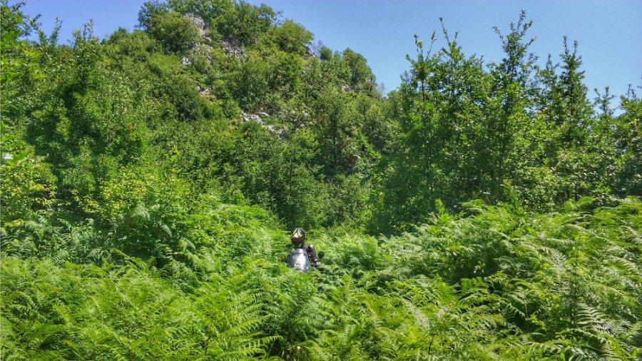 Balkan Big Enduros Motorrad Reise16